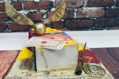 Louise - Harry Potter Birthday Cake