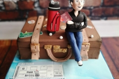 Eoin - Travel / Suitcase Birthday Cake