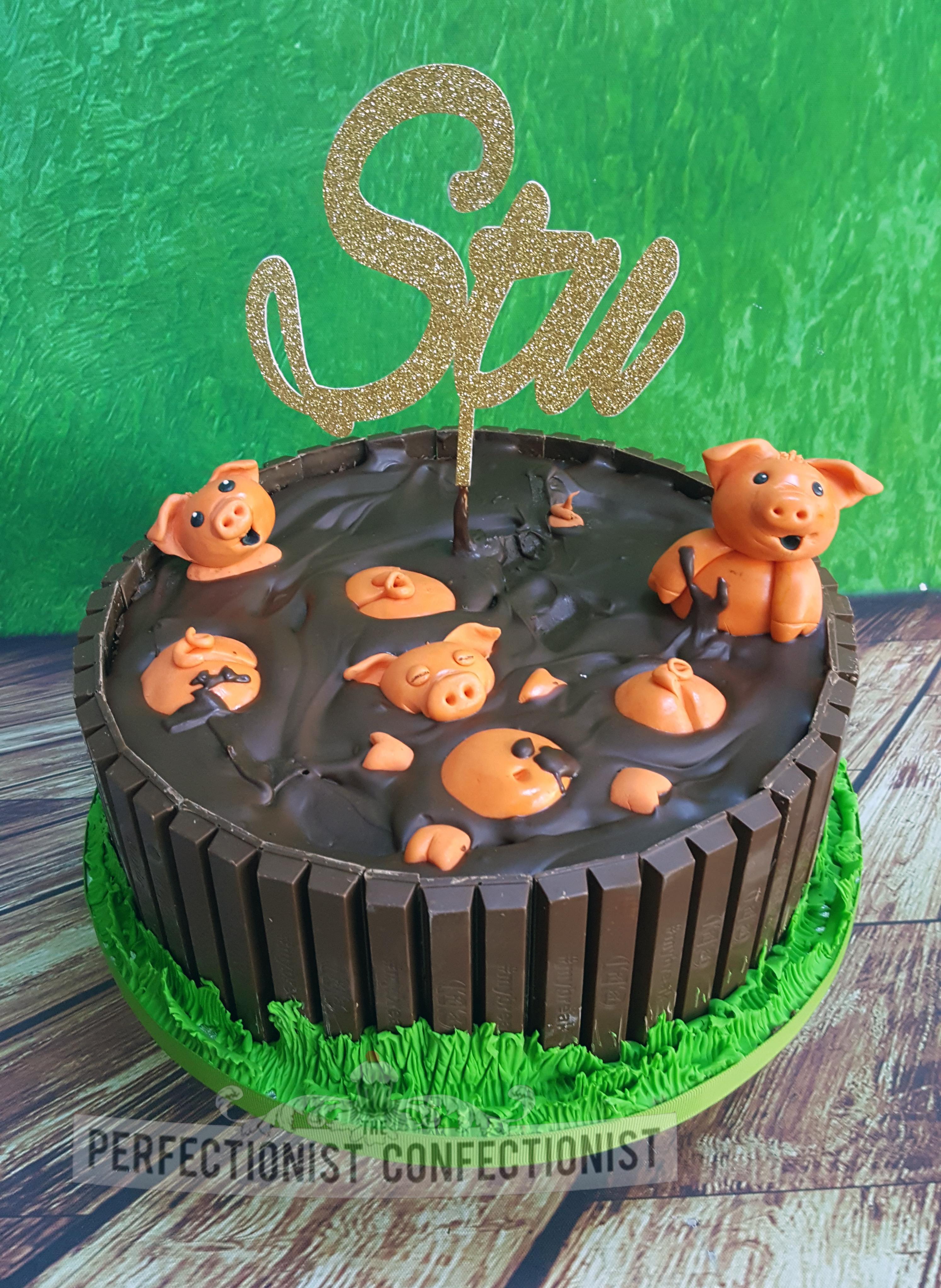 Stu - Happy as a pig in mud 40th birthday cake