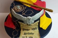 Lara - Harry Potter Birthday Cake