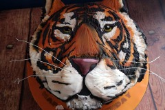Nathan - Tiger Face Birthday Cake