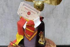 Eve - Harry Potter Birthday Cake