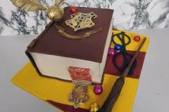Cathy - Harry Potter Spellbook Birthday Cake