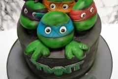 Darragh - Teenage Mutant Ninja Turtles Birthday Cake