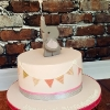 Ríona - Elephant First Birthday Cake