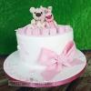 Caoimhe - 1st Birthday Cake