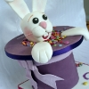 Magician\'s Rabbit / Guess How Many Smarties Cake