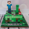 Harry - Minecraft Birthday Cake