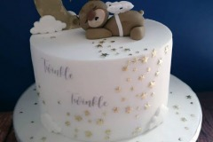 Twinkle Little Star Babyshower Cake