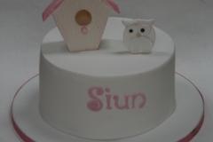 Suin - Birdhouse Christening Cake