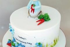 Tadhg - Peter Rabbit Christening Cake