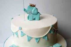 Odhran - Elephant Christening Cake