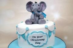 Jake - Elephant Christening Cake