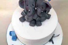 Evan & Lucas - Christening Cake