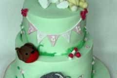Niamh - Favrouite Toys Christening Cake