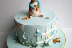 Darragh - Peter Rabbit Christening Cake