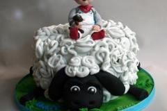Dan - Christening Cake