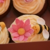 Insect Fairy Cupcakes