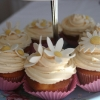 Orange Blossom Fairy Cake Cupcakes