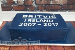 2007 - 2017 - Britvic Ireland Corporate Cake