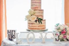 Shelbourne Hotel - Naked Wedding Cake