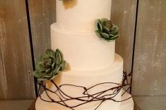 Shane and Melissa - Succulent Wedding Cake