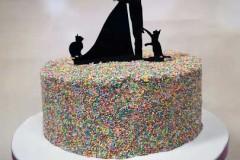 Amber and Gary - Sprinkle wedding cake