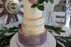 Brendan & Sinead - Angler's Rest, Naked Wedding Cake