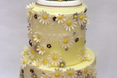 Sarah and Brian - Daisies and Lace Wedding Cake