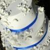 Hannah - Hydrangea Wedding cake